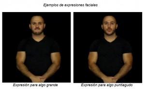 Ejemplos expresiones
